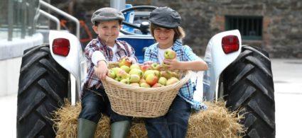 Farmhouses in Irlanda