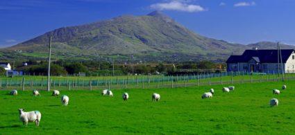 Itinerario a piedi al Croagh Patrick