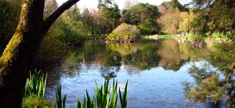 John F Kennedy Park and Arboretum