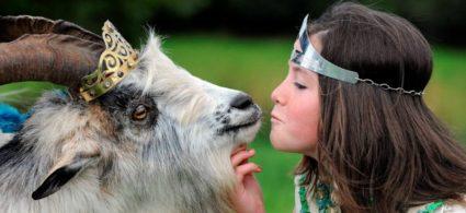Il Puck Fair, la festa del caprone